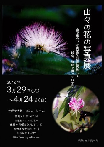 山々の花の写真展 - s